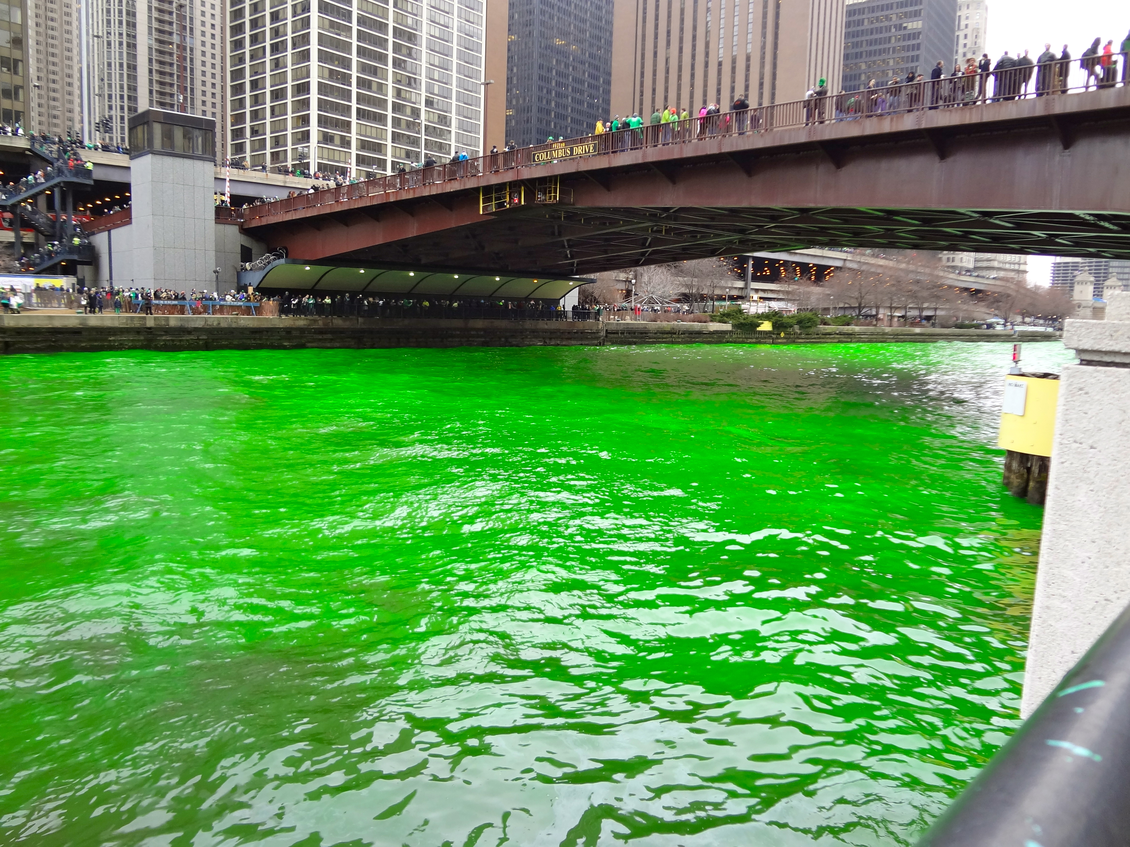 watching the chicago river turn green on st patrick u0027s day kavi360
