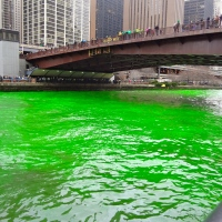 Watching the Chicago River turn GREEN on St. Patrick's Day