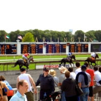 A day at the races: Arlington Park, IL