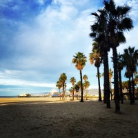 Scenes from Santa Monica